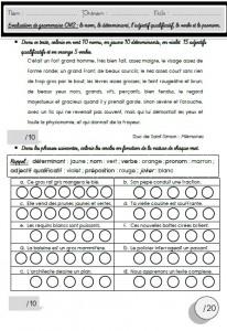 Des Evaluations Sur La Nature Des Mots Grammaire En Couleur Ma Maitresse De Cm1 Cm2